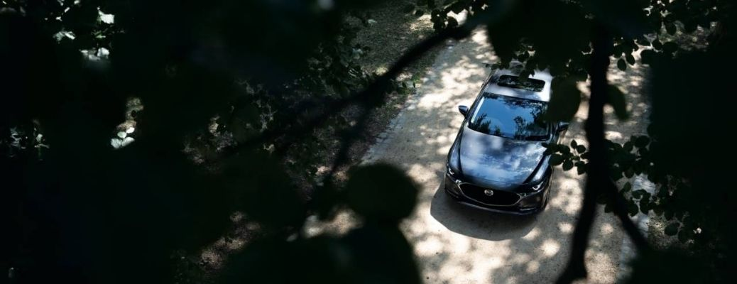 2021 Mazda3 top down viewed through trees