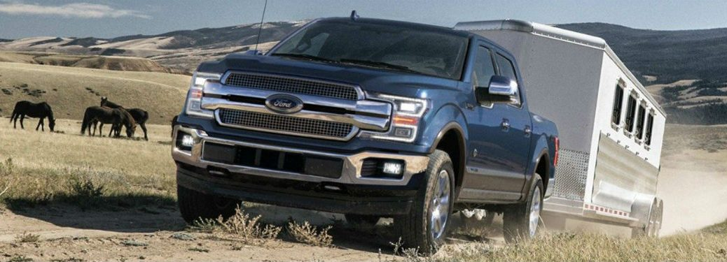 2019 Ford F-150 exterior front fascia and driver side pulling trailer in grass next to horses