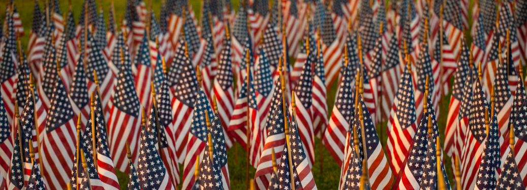 grass field filled with planted american flag replicas