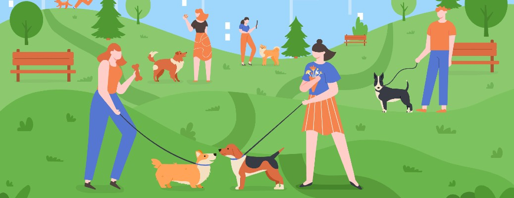 Where can I find a dog park near Portland OR?