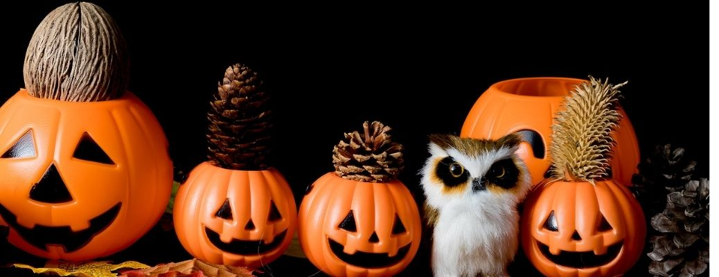 Things To Do for Halloween 2021 in Massachusetts