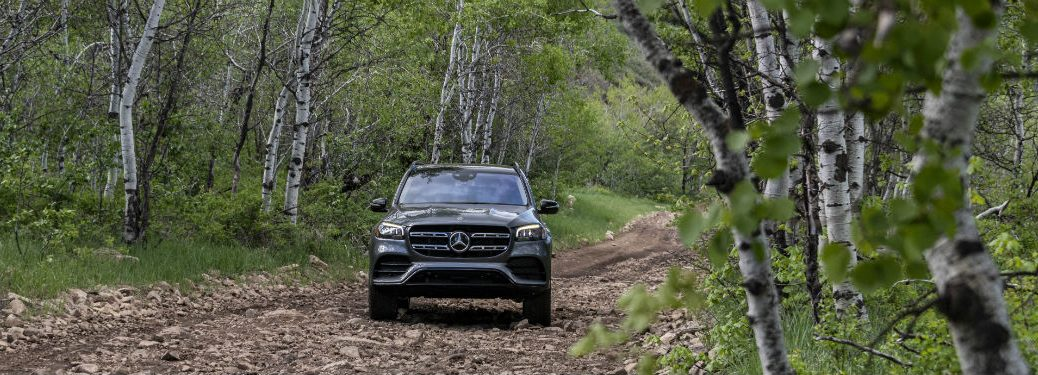 2020 MB GLS exterior front fascia off road in green woods with birch trees