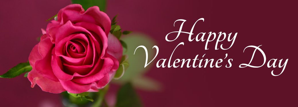 A Happy Valentine's Day Message with a rose