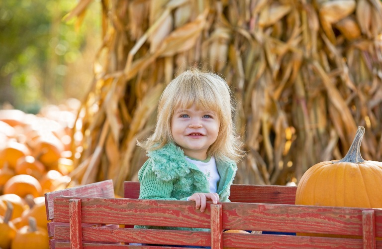 Little girl in a wagon at a pumpkin patch