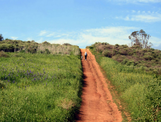 Best Hiking Trails in Orange County CA - Peters Canyon