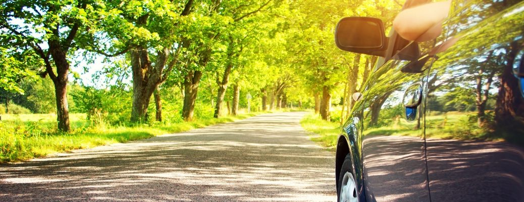 Vehicle driving by green trees