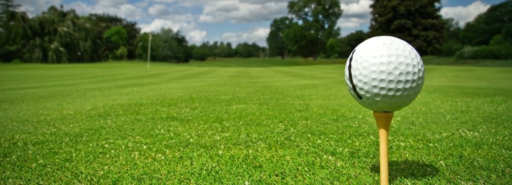Ball view from a golf course