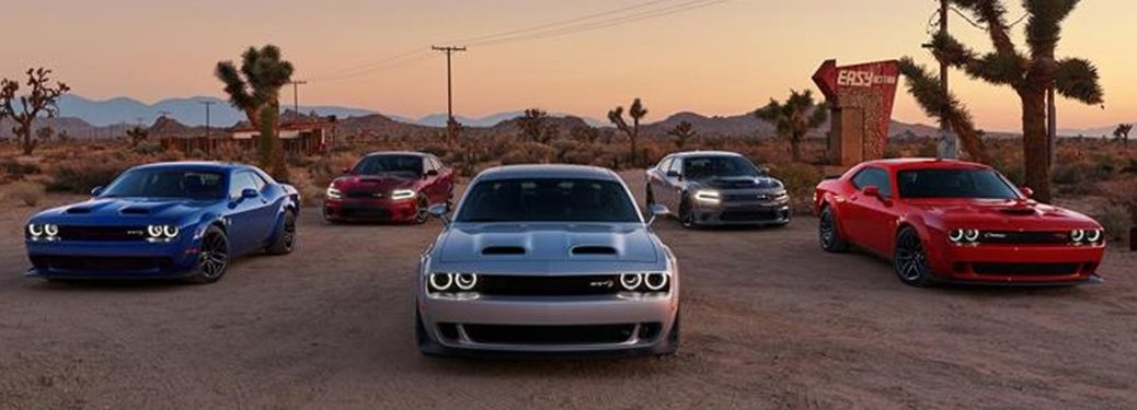 2019 Dodge Challenger cars looking tough