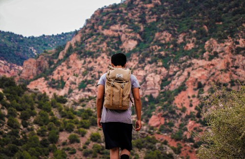 man hiking with brown backpack on