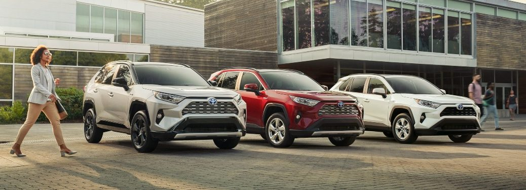 Three 2019 Toyota RAV4 models lined up in a row