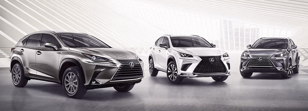 Silver, White and Gray 2020 Lexus NX Models on Light Background