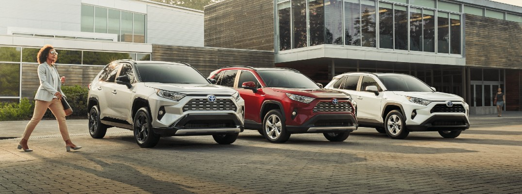 What are the Color Options of the 2020 Toyota RAV4 and RAV4 Hybrid?
