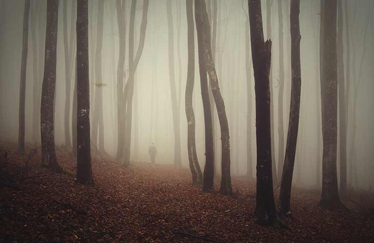 Figure in the woods with fog