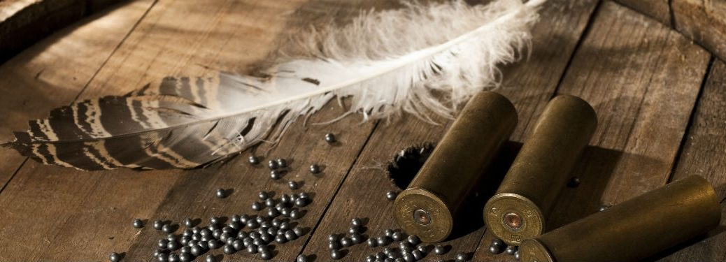 shotgun shells and a dove feather on a wooden table