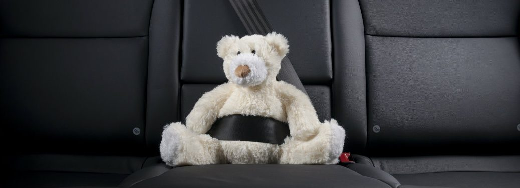 car seat teddy bear buckled in