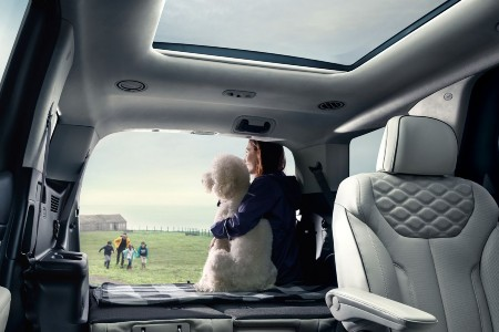 Woman and her dog siting in the back of the 2020 Hyundai Palisade with the seats folded