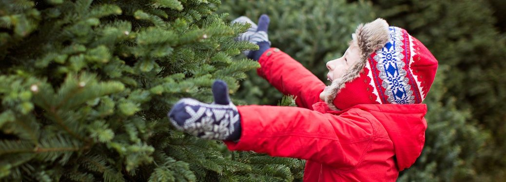 Happy child in a red jacket choosing a real Christmas tree