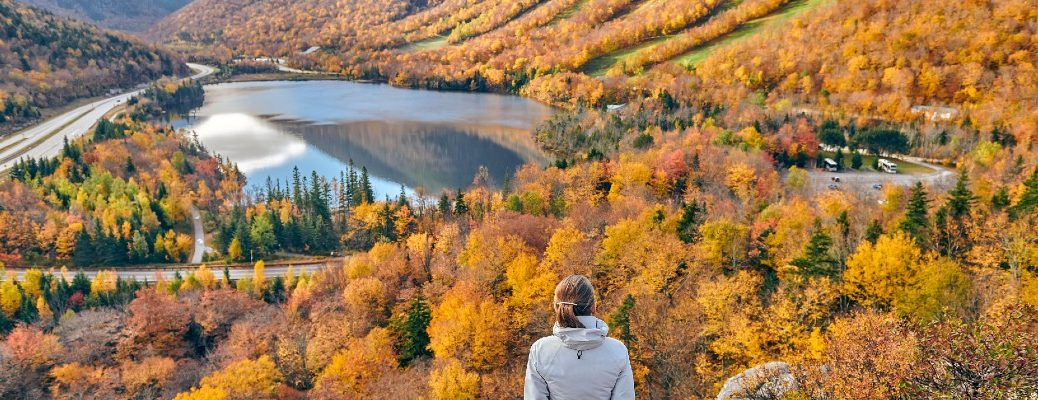 A stock photo of a person overlooking a valley covered in fall colors.