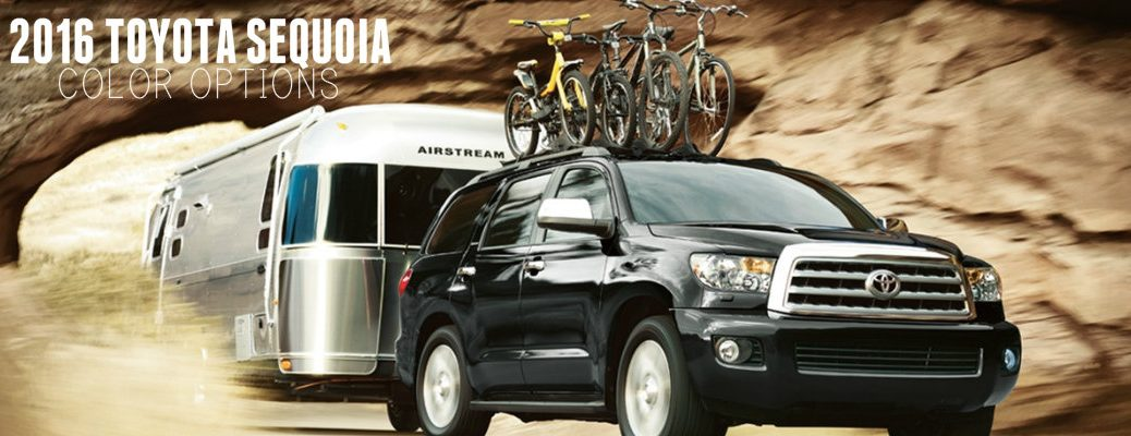 2016 Toyota Sequoia color options