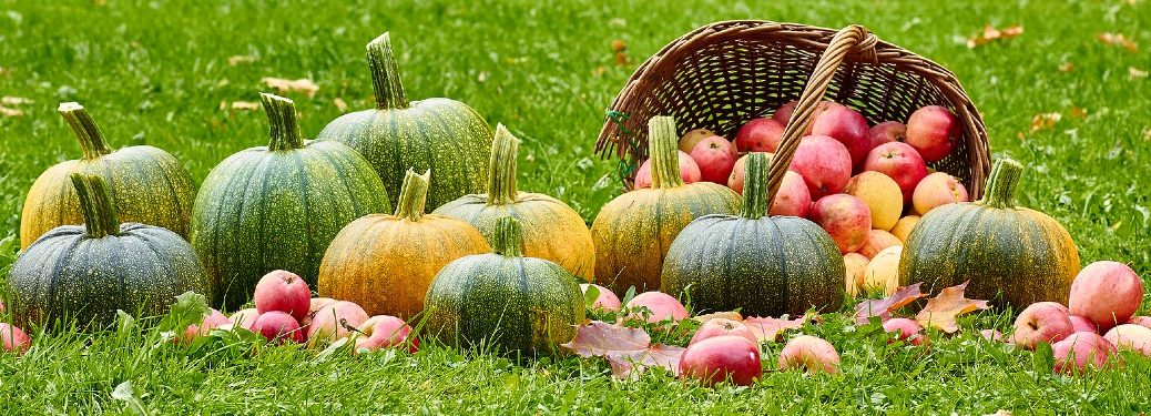 Pumpkins and apples in basket on grass