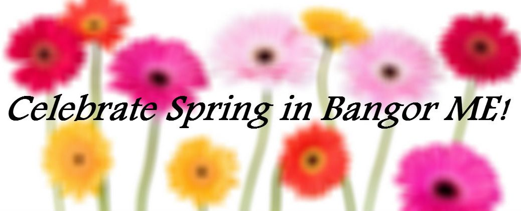 Local 2016 April Events and Festivals Bangor ME at Downeast Toyota-Bangor ME-Bright Spring Flowers on White Background