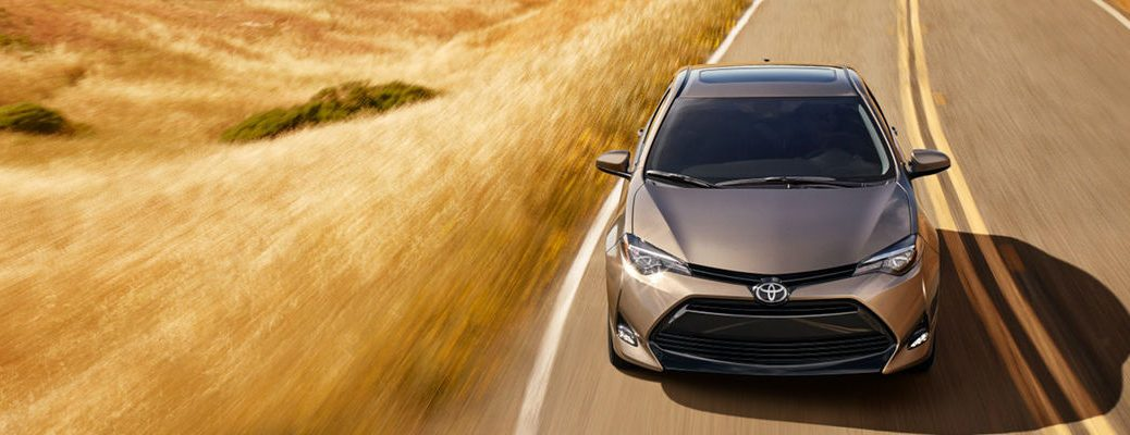 Falcon Gray metallic 2019 Toyota Corolla on a Country Road