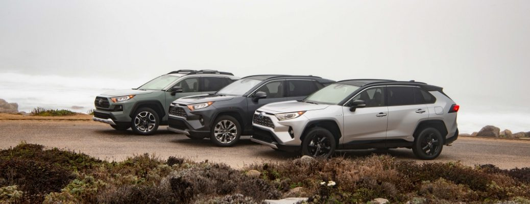 Silver, Gray and Green 2019 Toyota RAV4 Models Parked on the Coast