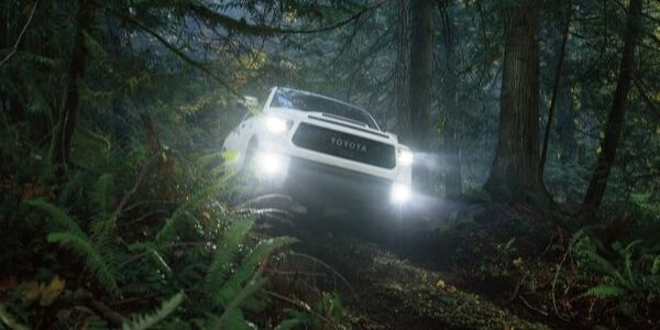 White 2020 Toyota Tundra TRD Pro in a Dark Forest