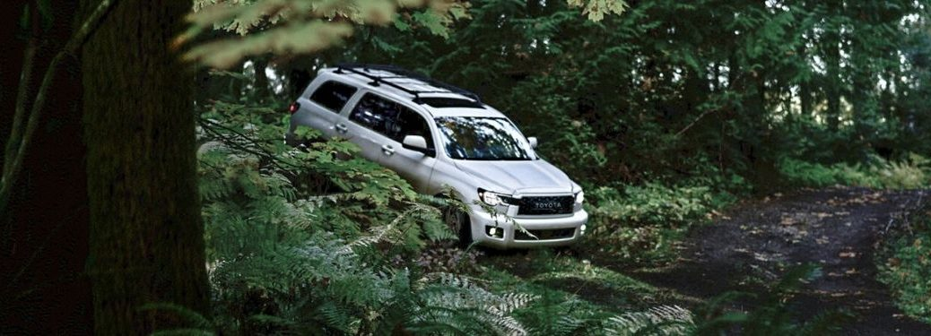 White 2020 Toyota Sequoia TRD Pro in a Forest