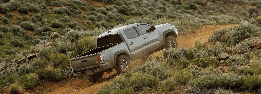 2020 Toyota Tacoma back side view green