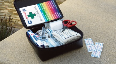Image of a Toyota first aid kit