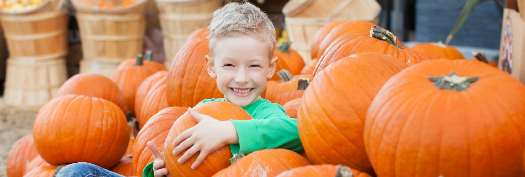 Best Fall Activities Near Columbia