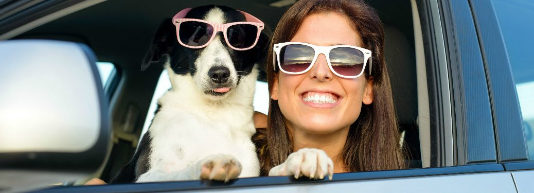 dog and woman wearing sunglasses looking out of car's driver's side window