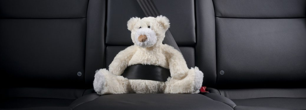 teddy bear buckled up in back seat of vehicle