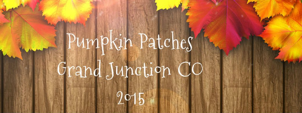 Grand Junction CO Pumpkin Patches 2015