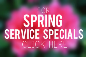 Service coupons grand junction co