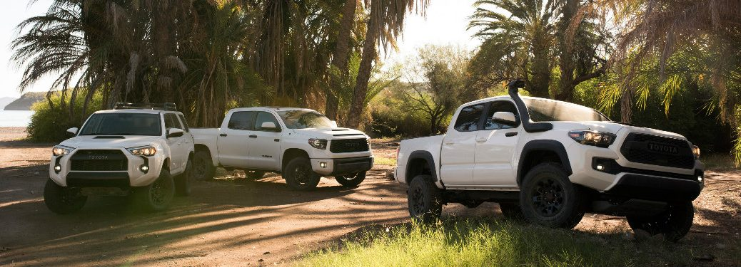 White 2019 Toyota TRD Pro Models Parked near a Tropical Beach