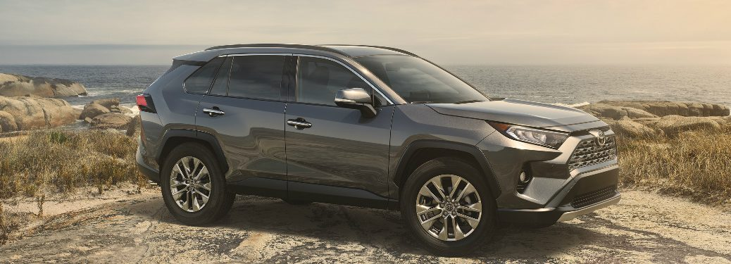 Grey 2019 Toyota RAV4 Parked near the Ocean