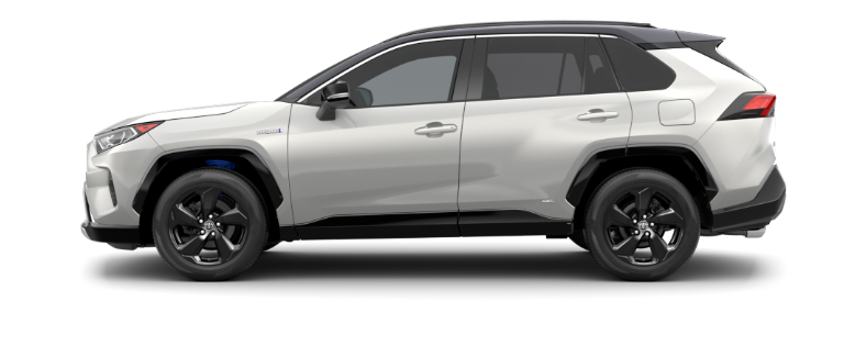 2020 Toyota RAV4 Blizzard Pearl and Midnight Black Metallic side view