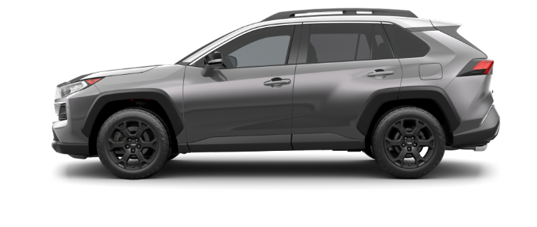 2020 Toyota RAV4 Magnetic Gray Metallic and Ice Edge side view