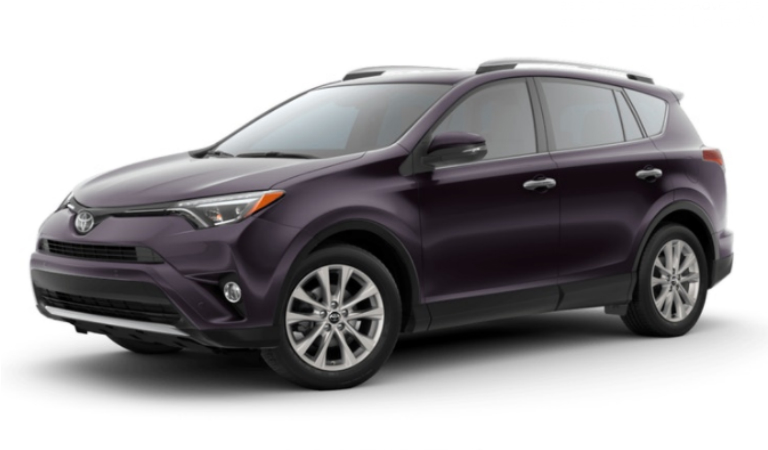 2018 Toyota RAV4 in Black Currant Metallic
