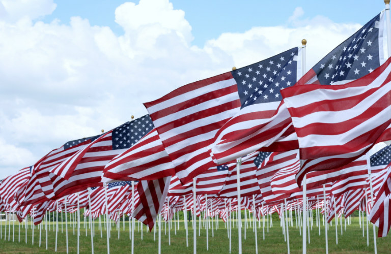 Field full of small American Flags