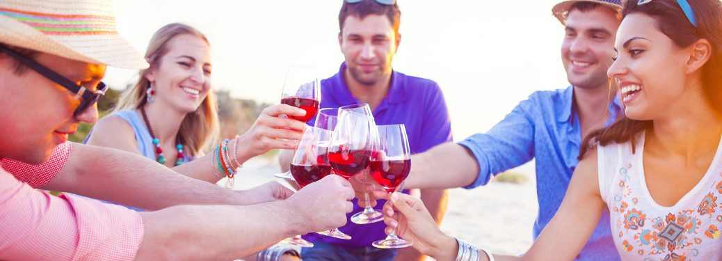 group of friends toasting wine glasses at a picnic