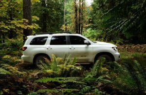 2020 Toyota Sequoia going through the woods