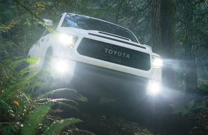 2020 Toyota Tundra front end in the woods