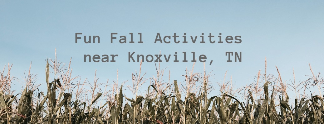 Fun fall activities near Knoxville, TN with corn on the bottom of the image