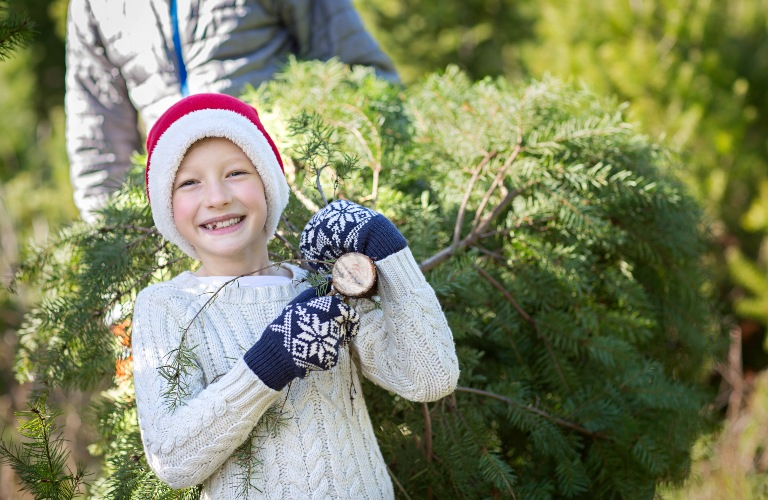 Little kid excited about new tree