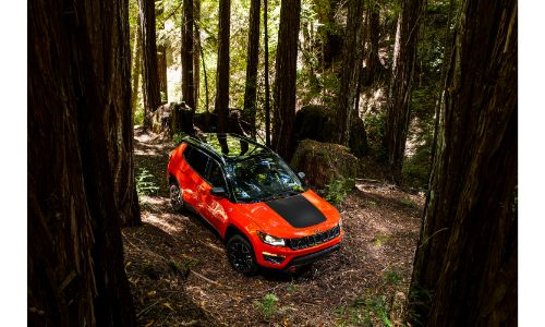 2021 Jeep Compass Trailhawk exterior overhead shot driving through a forest