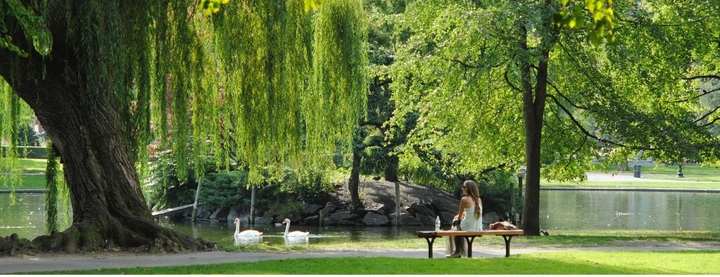 A lady enjoying the beauty in a park
