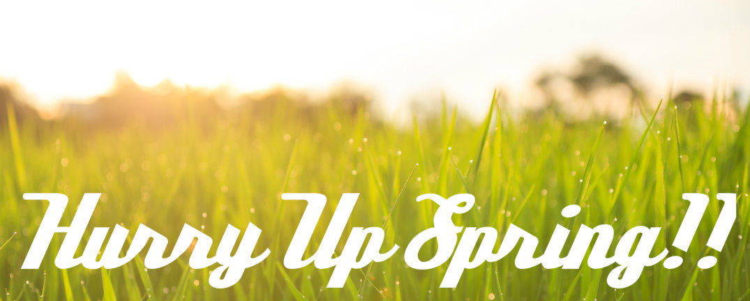 Are you looking forward to spring?